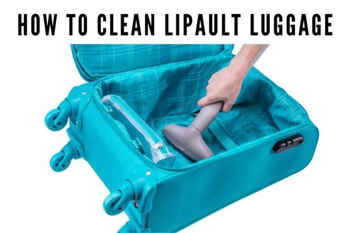 how to clean Lipault luggage